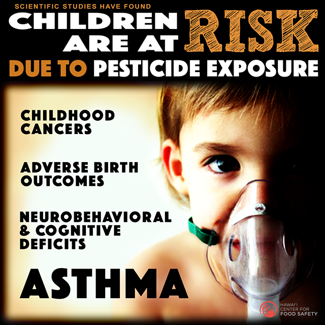 Pesticide health cancer