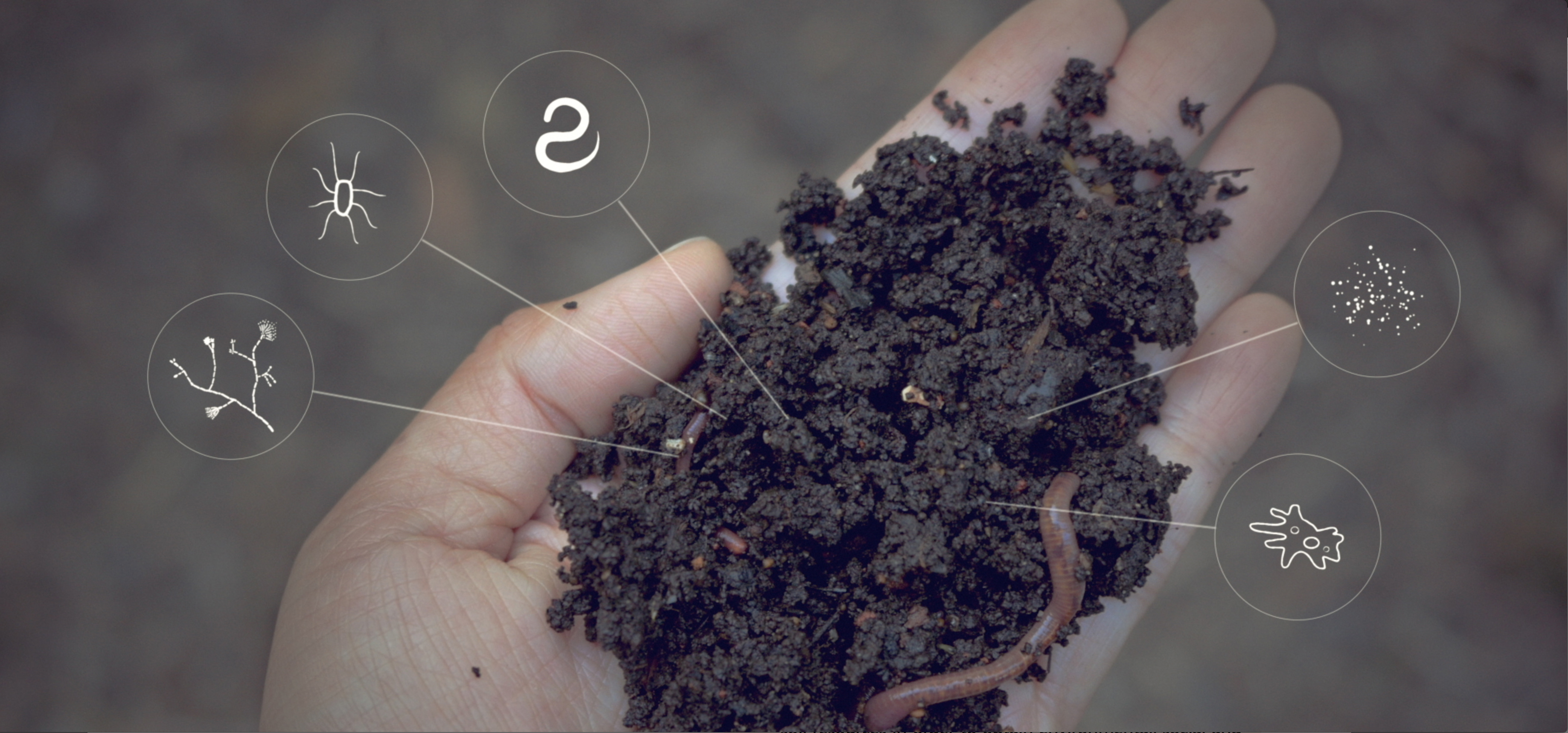 Center for food safety video cfs videos soil for Organic soil solutions