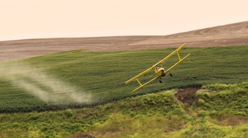 USDA Approves New GE Corn and Soy, Triggering Onslaught of Millions of Pounds More Pesticides