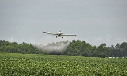 Farmers, Conservation Groups Challenge EPA's Unlawful Re-approval of Dangerous, Drift-Prone Dicamba Pesticide